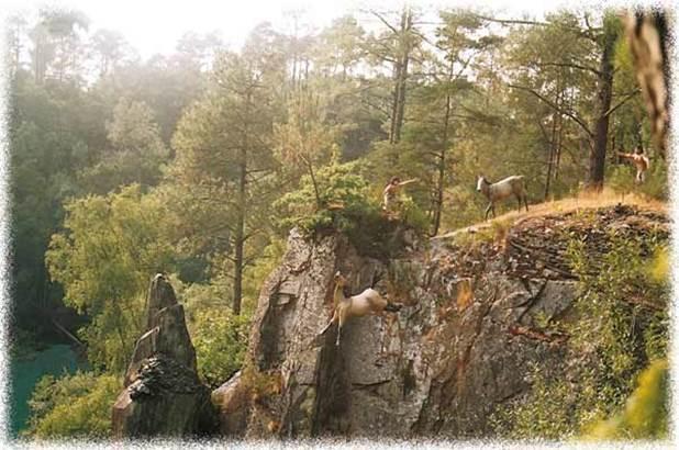 OT Vannes parc de prehistoire de bretagne - malansac - morbihan bretagne sud