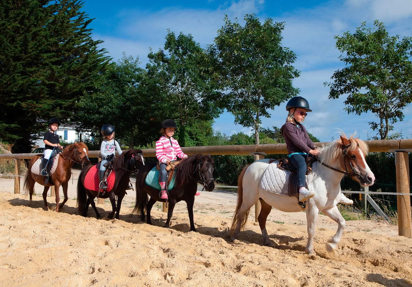 Centre-Equestre-Mané-Guernehué-Baden-Golfe-du-Morbihan-Bretagne-Sud © Centre Equestre Mané Guernehué