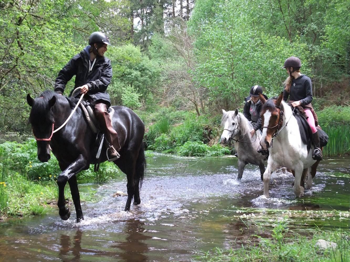 Centre-Equestre-Lanvenegen-Pays-Roi-Morvan-Morbihan-Bretagne-Sud © Laurélie Fazan