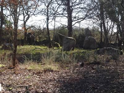 Les Menhirs de Kerjean