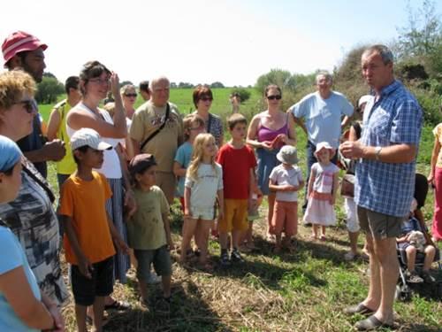 Le champs de tr�fle Fromagerie