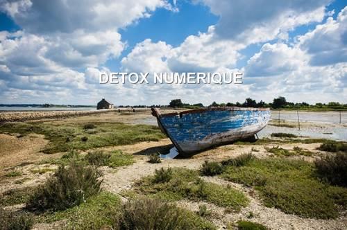 Detox numérique en Bretagne sud, à Vannes