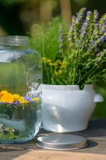 Balades gourmandises florales de l'été