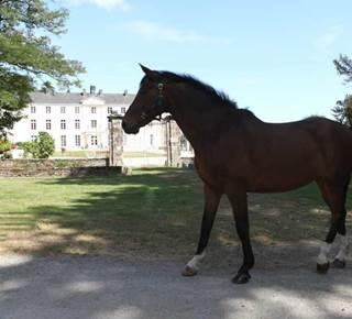 Centre Equestre Les Ecuries de la Chênaie