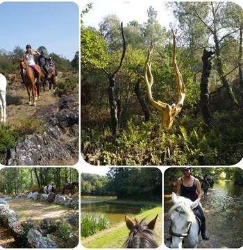 Brocéliande randonnée à cheval formule à la carte , une journée jusqu'à 5 jours