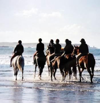 Centre equestre l'Eperon-Quiberon-Morbihan-Bretagne Sud