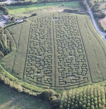 Labyrinthe-Géant-de-Maïs-Sarzeau-Presqu'île-de-Rhuys-Golfe-du-Morbihan-Bretagne sud