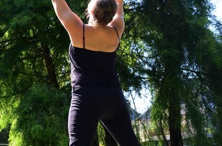 Mes matins zen : Qi Gong de l'arbre, posture et méditation